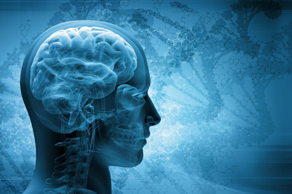 <strong>BØR HOLDES I FORM:</strong> Å trene hjernen kan redusere risikoen for demens –her er fem matteapper å bryne seg på i ferien. Foto: SCANPIX