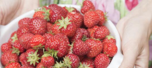 Slik vasker du frukt og bær