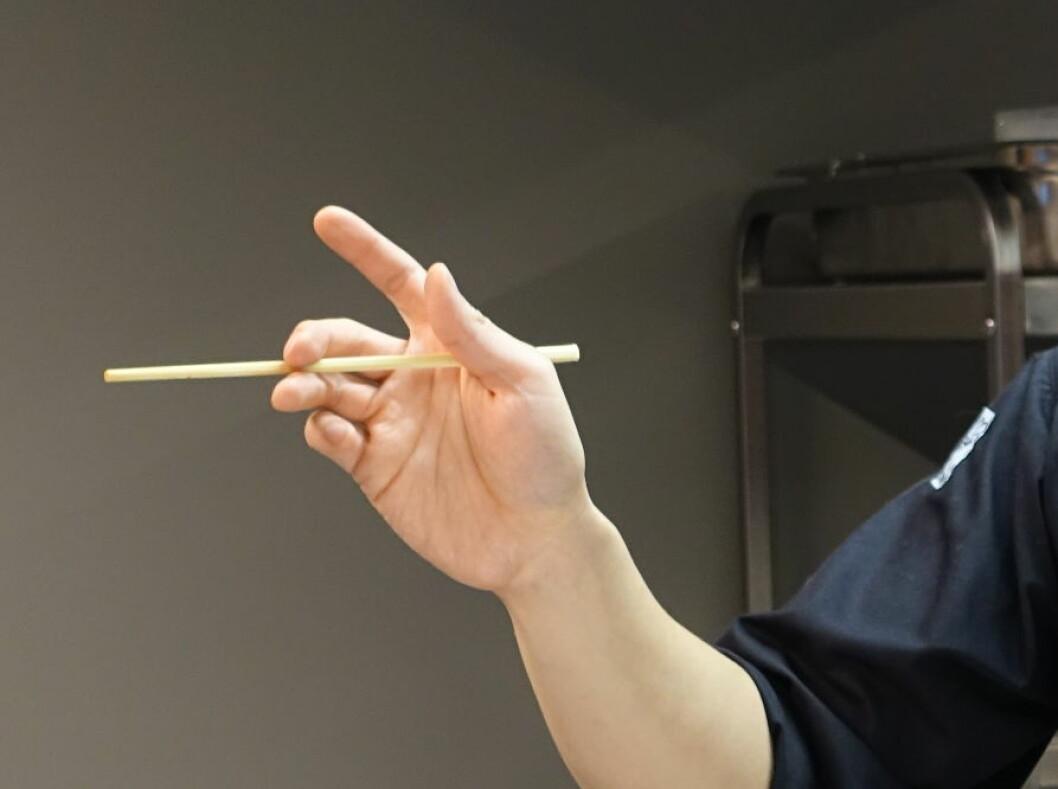 Den  nederste pinnen skal hvile mellom langfinger og ringfinger - og mellom tommel og pekefinger. Foto: ELISABETH DALSEG
