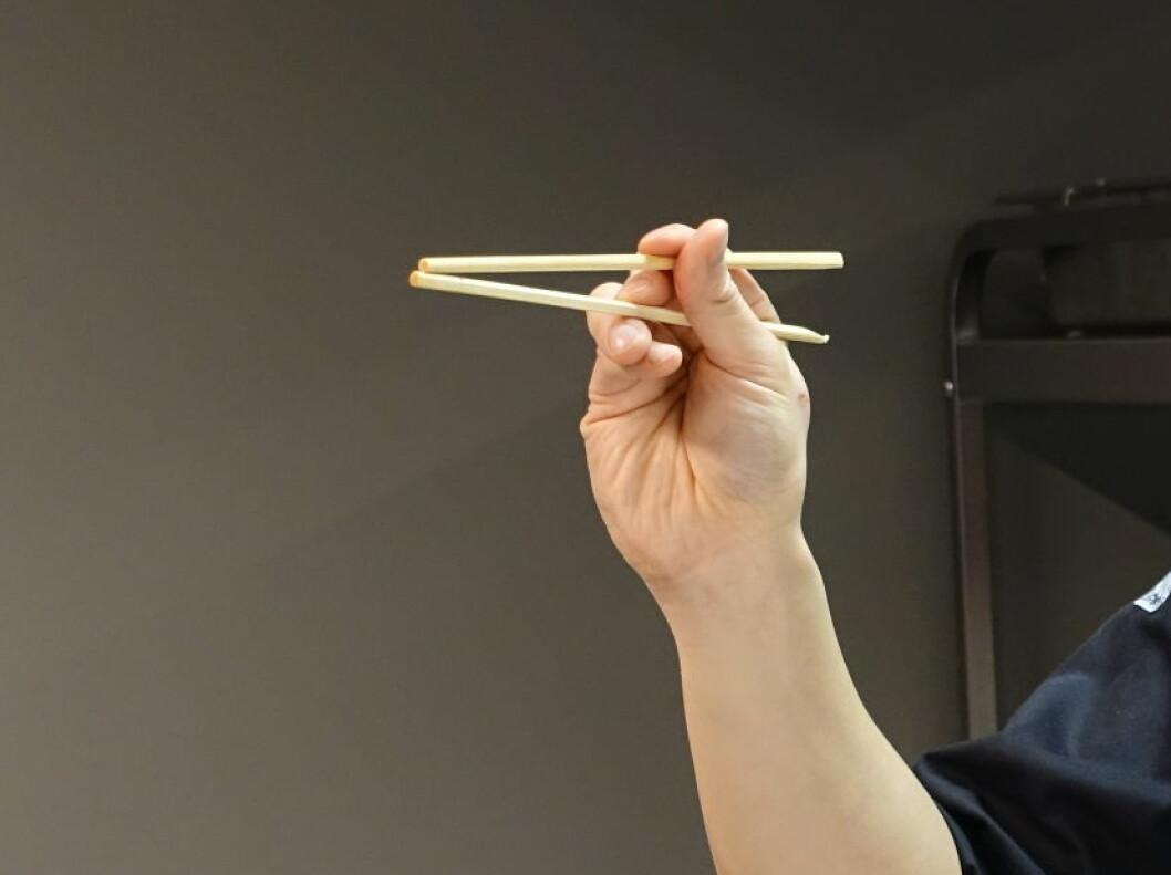 Det er den øverste pinnen som skal bevege seg og gripe maten, den underste pinnen skal ligge i ro. Foto: ELISABETH DALSEG