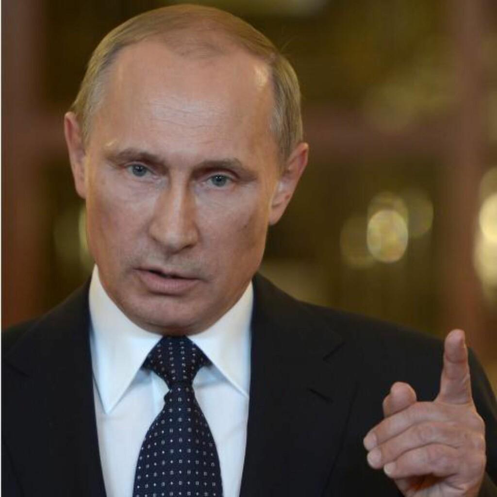 VERDEN PEKER PÅ PUTIN: Både USA og Ukraina mener det er helt klart at pro-russiske separatister skjøt ned flyet. Russlands president Vladimir Putin fikk også hard medfart i sikkerhetsrådet i går, og mange mener opprørerne har fått våpnene fra Russland. Foto: AFP PHOTO / RIA-NOVOSTI / POOL / ALEXEI NIKOLSKY