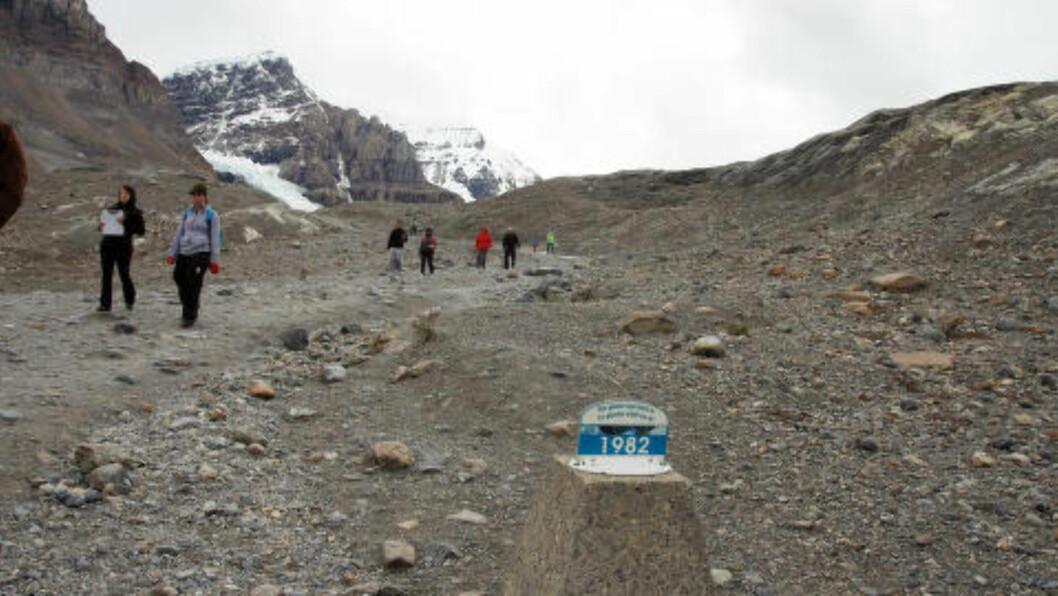 <strong>SMELTER:</strong> Små skilt med årstall hvor raskt Athabasca Glacier har krympet etter hvert som klimaet har blitt varmere. Fortsetter nedsmeltingen i samme tempo er isbreen nesten borte om 100 år. Foto: PETTER LØKEN
