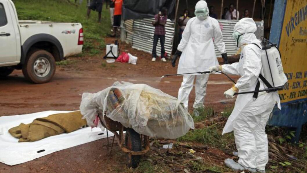 <strong>- HYSTERI:</strong> Ifølge Lena Dagsvold har befolkningen i Liberia i større grad enn tidligere innsett farene ved ebola. Ettersom flere har dødd som følge av smitte, er folk blitt mer og mer redde, forteller hun Dagbladet. - Døde mennesker blir kastet på gata i frykt for smitte. Ingen vil at noen skal få vite at familiemedlemmer har fått ebola, da de frykter at myndighetene vil stenge huset deres, sier Lena. Foto: Ahmed Jallanzo/EPA/Scanpix