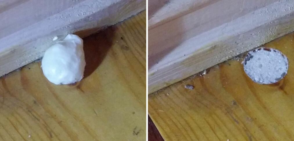 Dette trikset kan stoppe mus på vei inn i huset