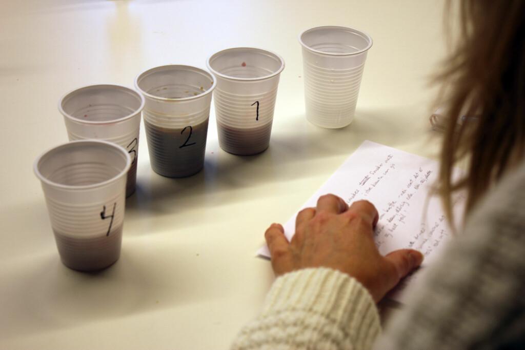 BLINDTEST: Fire personer har blindtestet åtte sorter gløgg.  Foto: BERIT B. NJARGA