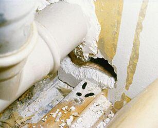 image: Oslofolk frykter rottene minst