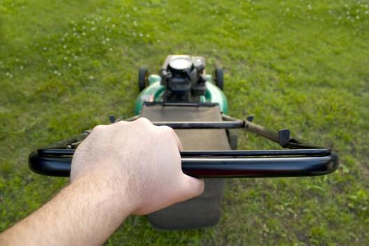 <strong><b>STØRRELSEN:</strong></b> Både størrelsen på plenen, hvor mye busker du har og hvor ofte du klipper bør vurderes før du velger klipper. Foto: ALL OVER PRESS
