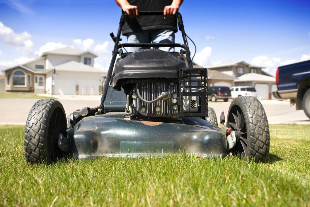 <strong>HVILKEN?</strong> Er du litt treg med å klippe gresset, bør du velge en gressklipper med oppsamler, eller kanskje en robotklipper?  Foto: ALL OVER PRESS