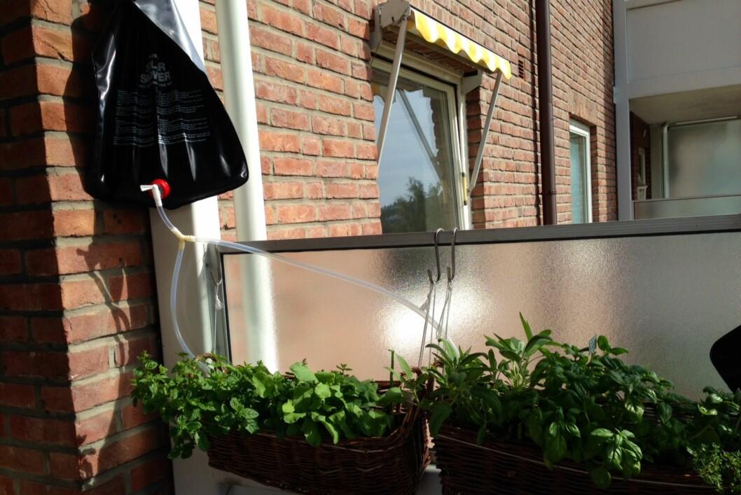 <strong><b>SMART:</strong></B> Kjøkkenhagen på balkongen får rikelig med væske, selv på varme dager i solveggen.  Foto: PER ERVLAND