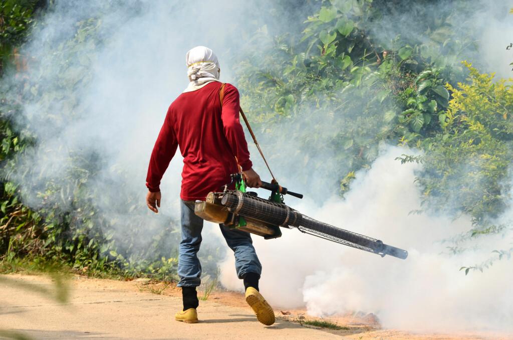 DENGUEFEBER: I Thailand er den potensielt alvorlige sykdommen et stort problem i år.  Foto: PantherMedia