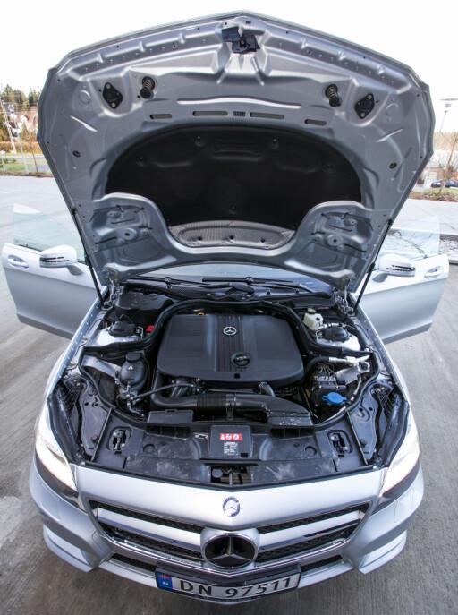 """204 hestekrefter og 500 newtonmeter gir bilen de nødvendige kraftressursene. Men i en slik bil, er """"nødvendig"""" tilstrekkelig...? Foto: Per Ervland"""