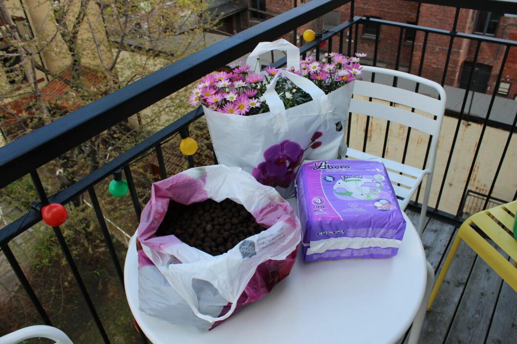 Lecakuler, bleier og blomster. Vi er væpnet til tennene. I år skal balkongkplantene ikke dø før frosten tar dem! Foto: Elisabeth Dalseg