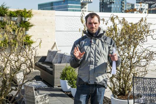 Insektene kan gjøre mye, men ikke alt. gartner Karsten Raddatz fra Hageform har følgende melding til alle som lurer på hvilke planter som er vedlikeholdsfrie: Det finnes ikke vedlikeholdsfrie planter! Foto: Per Ervland