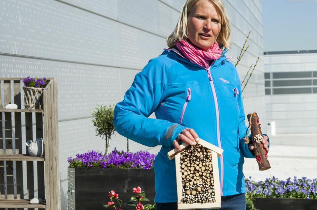 - Her kan for eksempel marihøner og gulvinger som kan hjelpe deg med hagearbeidet slå seg til, sier Anne Kari Skjørdal. Foto: Per Ervland