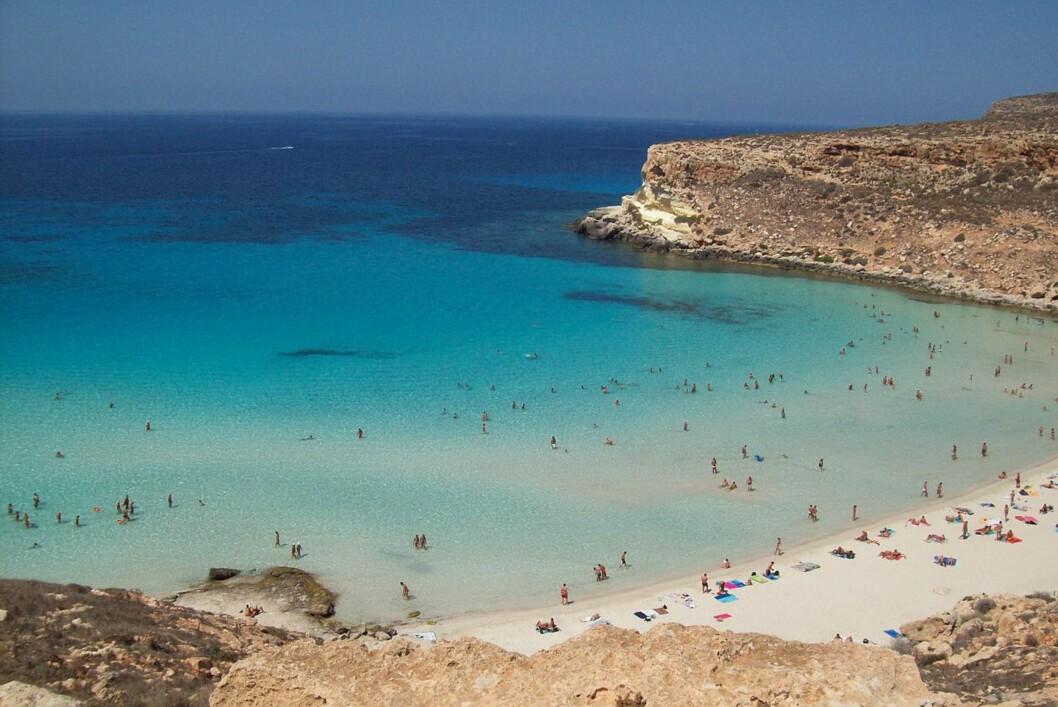 """Rabbit Beach på den lille øya Lampedusa utenfor Sicilia hedres som verdens fineste strand i 2013 av Trip Advisor. (Bildet publisert under <a target=""""_top"""" href=""""http://creativecommons.org/licenses/by/3.0/deed.no"""">Creative Commons-lisens</a>) Foto: Figiu (Wikimedia Commons)"""