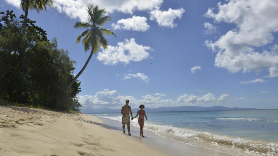 <strong>HØYSESONG:</strong> Kantsesonger er ofte de beste - fint vær og lite mennesker. Som her på Guadeloupe. Foto: GJERMUND GLESNES