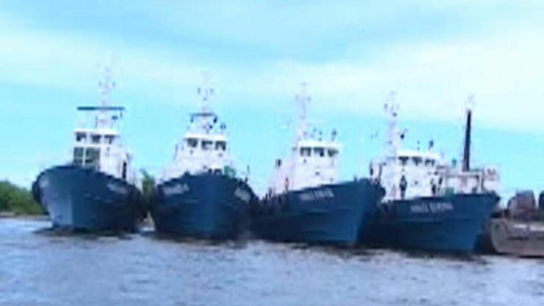 <strong>I LAGOS:</strong> Dette bildet ble tatt i havna i Lagos forrige uke, og viser fire av de seks tidligere missiltorpedobåtene side om side, med soldater om bord. Foto: Privat