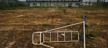 Får flytte hjem til Fukushima