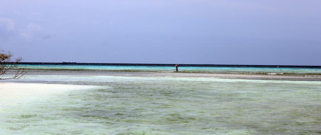 Flere prøver fiskelykken langs stranden.  Foto: Silje Ulveseth