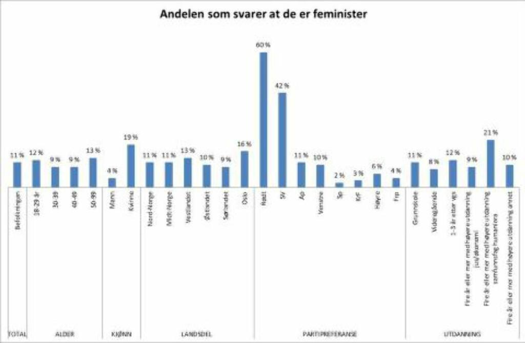 UNDERSØKELSEN: Feministene utgjør elleve prosent av befolkningen: fire prosent for menn, og 19 prosent for kvinner. En av fem kvinner er altså feminister etter eget utsagn. Foto: Norstat / Manifest Tidsskrift / Funkenhauser Productions