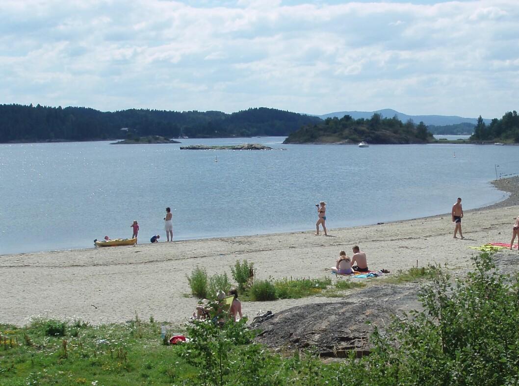 Storøyodden er en ny strand i norsk sammenheng. Den ligger på Snarøya i Bærum. Foto: Bærum kommune