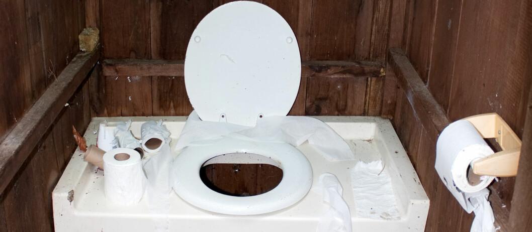 <b>LEI AV UTEDO?</b> Du kan få det som hjemme på hytta, selv uten offentlig tilknytning. Foto: colourbox.com