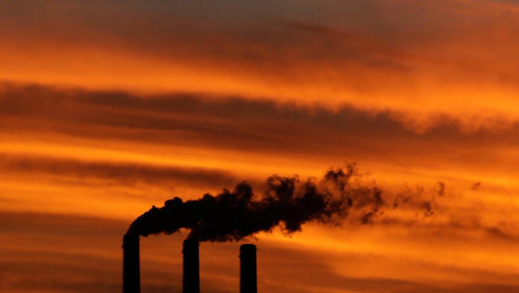 <strong>BÆREKRAFT:</strong> - Ved å følge logikken bak å trekke seg ut av fossile brensler som kull (avbildet), kan Pensjonsfondet lede verden an i kunsten å skape nye og mer bærekraftige investeringsporteføljer, skriver Clapp. I dag behandles fondets fossile utenlandsinvesteringer i Stortinget. Foto: NTB Scanpix