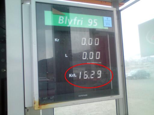 Denne pumpeprisen fra Kjøllefjord, observert i fjor, er fortsatt i øvre sjikt. Foto: Privat