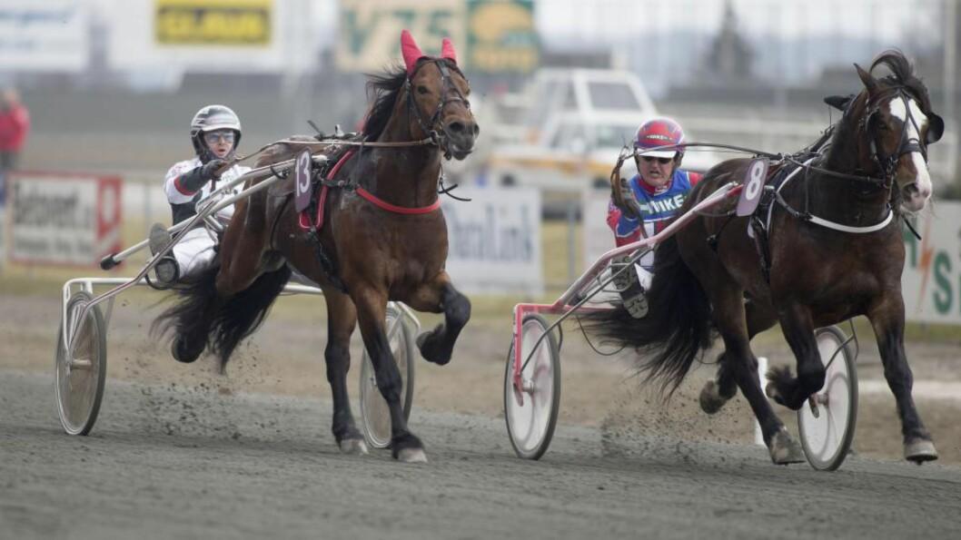 HER KOMMER HAN. Gylden Balder (t.v.) måtte gi tapt for Føynland Kongen på Momarken i comebackløpet. Men onsdag er det grønt i V65-5. Foto: HESTEGUIDEN.COM.