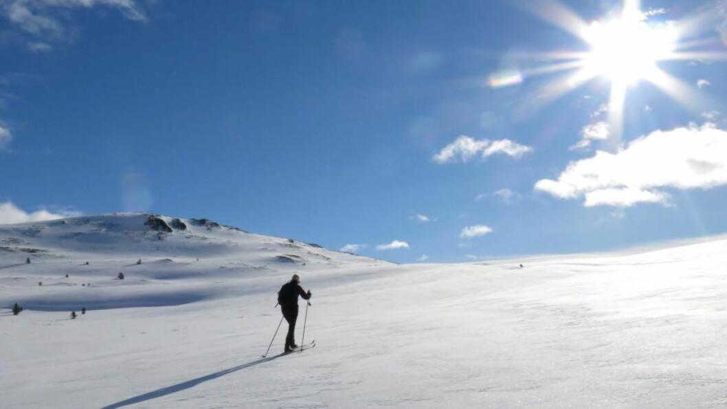 <strong> STRÅLENDE VÆR:</strong>  Påskeværet har vært varierende for store deler av landet, men mot slutten har det vært strålende i Sør-Norge. Og slik vil det fortsette. Bildet er fra palmesøndag i Sødorpfjellet i Gudbrandsdalen. Foto: Paul Kleiven / NTB scanpix