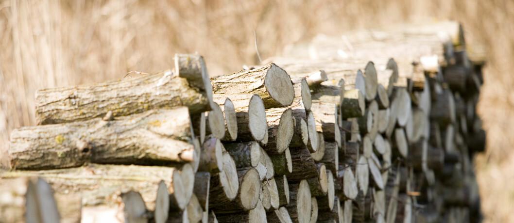 Kjøper du veden nå er du garantert fyr på peisen i vinter. Foto: Colourbox.com