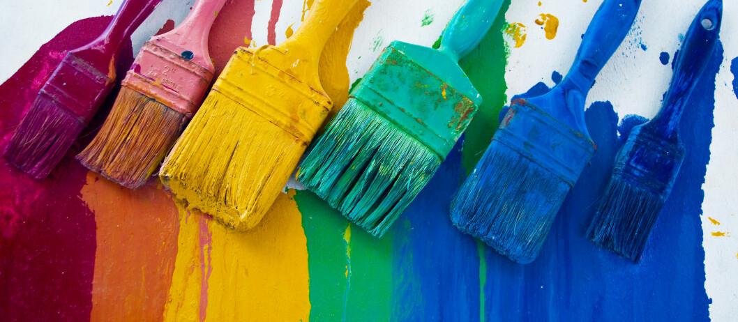 Når penslene er renset for maling etter produsentenes anbefalinger, skal busten være myk og klar til ny dyst.  Foto: Colourbox