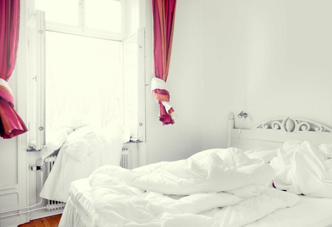 """Dyneløfting og dynelufting i rosenes hjem.<a target=""""-blank"""" href=""""http://fantasticfrank.wordpress.com/2011/03/04/rosor-for-3-3-miljoner/"""">Fantastic Franks blogg</a> Foto: Anders Lindén"""