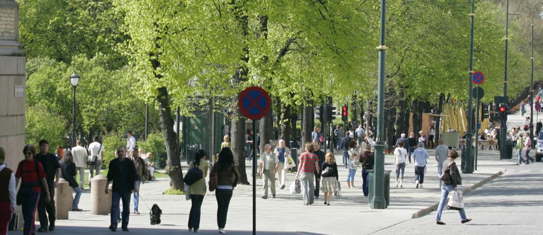 Ikke så overraskende kanskje, men nok en gang fremheves Oslo som dyreste turistdestinasjon. Foto: Colourbox.com