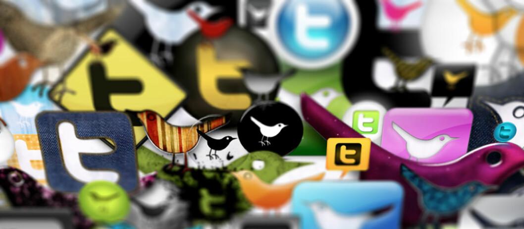 """Det finnes mange nettjenester som kan brukes mot Twitter. (Foto: """"<a href=""""http://www.flickr.com/photos/webtreatsetc/4050775142/"""">Webtreats 53 Twitter Icons Promo Pack</a>"""" av <a href=""""http://www.flickr.com/photos/webtreatsetc/"""">Webtreats</a>, <a href=""""ht"""