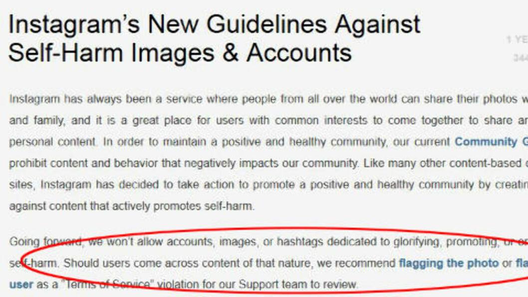 REGLER: Instagram skriver i sitt reglement at det ikke er lov til å lage kontoer basert på å promotere eller framdrive selvskading. Bildedelingstjenesten har derfor gjort flere ord «ulovlige». Skjermdump: Instagram