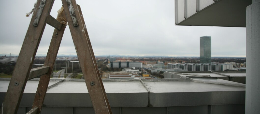<strong><strong>FARLIG:</strong></strong> Stiger ligger på rapporteringstoppen når det gjelder farlige produkter som brukes i hjemmet. Foto: Colourbox.com