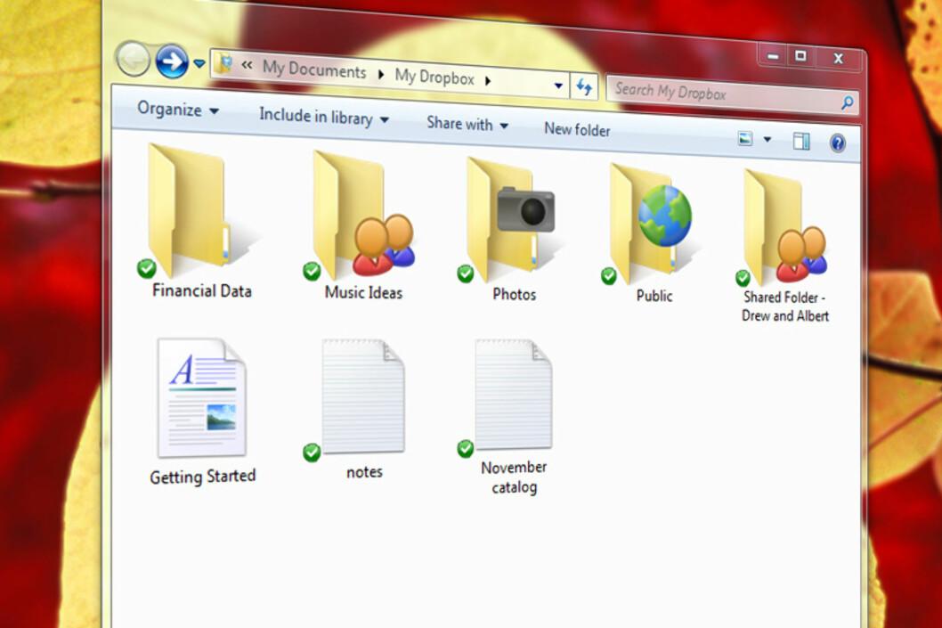 Dropbox lar deg lagre ting på nett og se dataene som en ekstra harddisk i operativsystemet. Det kan du utnytte.