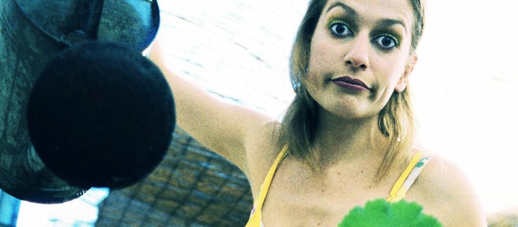<strong><b>VEKSTGARANTI:</strong></b> Noen hagesenter gir deg 12 måneders vekstgaranti, andre sesonggaranti - men du kan i alle fall klage og få ny, dersom den flerårige hageveksten ikke vokser som man kan forvente.  Foto: colourbox.com