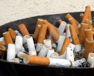 81 grunner til å stumpe røyken