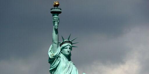 image: Ti dollar for å besøke USA