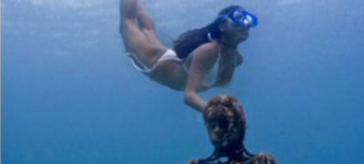 Skulpturpark under vann