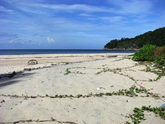 På denne øya skal de ti tilbringe en hel måned alene. Foto: Huenu Solsona