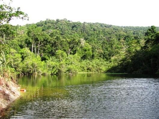Denne lille innsjøen er den eneste kilden til ferskvann som finnes på øya. Den munner ut i sjøen så deltakerne må gå et stykke oppover elven før det er rent vann. Foto: Huenu Solsona