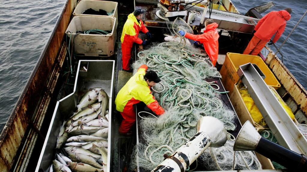STORMAKT: Norge er verdens nest største eksportør av sjømat og vi eier noen av verdens vikltigste fiskefelt. Foto: Espen Røst / Dagbladet
