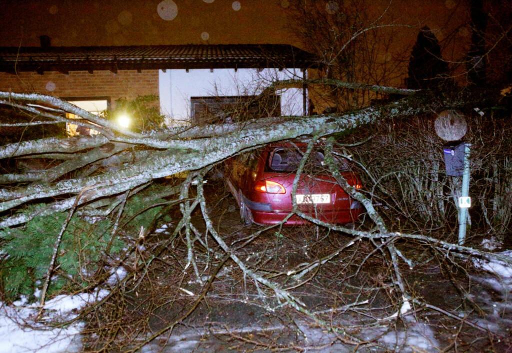 EN KNEKK: En rekke stormer har kommet veltende inn over kysten de siste ukene. Her har en bil fått smake uværet Ivars herjinger i Stjørdal sentrum.   Foto: Tor Aage Hansen / NTB scanpix