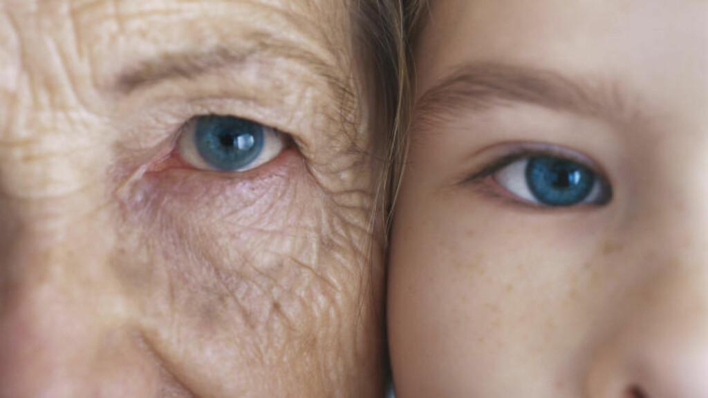 KAN ALDRING REVERSERES?: Forskere har funnet et stoff som reverserer aldring hos mus. Nå vil de prøve på mennesker. Foto: Colourbox