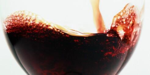 Kjemikalie i rødvin stopper virus