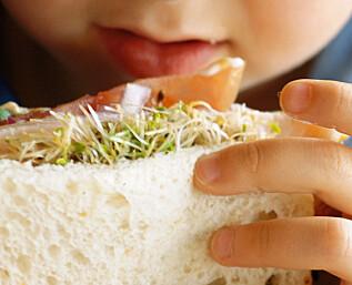 Matpakketips til barna