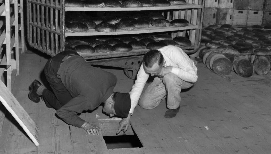 <strong>ETTEFORSKES:</strong> Her undersøker den amerikanske løytnanten Robert R. Rogers og Erich Pinkau fra det tyske politiet gjemmestedet under golvplankene i bakeriet der de jødiske hevnerne skal ha gjemt arsenikken. Foto: U.S. Army Signal Corps / AP / NTB Scanpix